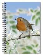 Robin On Frosty Briar Spiral Notebook