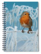 Robin On Frosty Grass Spiral Notebook