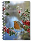 Robin On Holly Branch Spiral Notebook