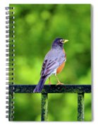 Robin On The Rail Portable Battery Charger for Sale by ...