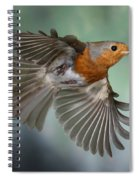 Robin On The Wing Spiral Notebook