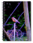 Robin On The Wires Spiral Notebook