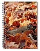 Robin Playing In Fallen Leaves Spiral Notebook