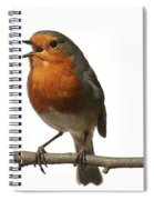 Robin Singing On Branch Spiral Notebook