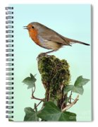 Robin Singing On Ivy-covered Stump Spiral Notebook