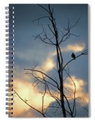 Robin Watching Sunset After The Storm Spiral Notebook