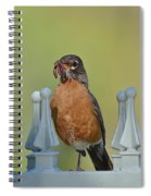 Robin With Worm II Spiral Notebook