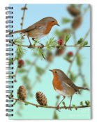 Robins On Larch Spiral Notebook