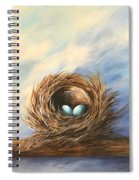 Robin's Two Eggs Spiral Notebook