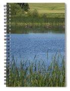 Rochester Wildlife Pond 1 Spiral Notebook