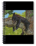 Rock-a-bye-baby/the Wild Bunch #2 Spiral Notebook