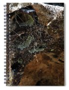Rock Abstract With A Web Spiral Notebook
