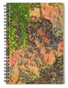 Rock And Shrub Abstract I  Spiral Notebook
