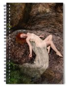 Rock Bathing Spiral Notebook