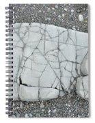 Rock Dog Spiral Notebook