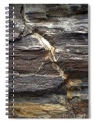 Rock Face Spiral Notebook