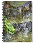Rock Fountain Spiral Notebook