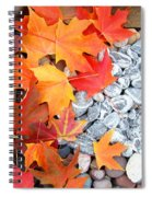 Rock Garden Autumn Leaves Spiral Notebook