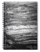 Rock Lines B W Spiral Notebook