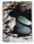 Rock Nest Spiral Notebook