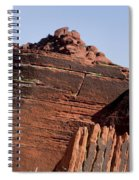 Rock Texture And Lichen Spiral Notebook