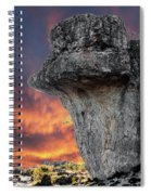 Rock Wallpaper Spiral Notebook