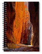 Rock Walls Of Zion Narrows Spiral Notebook