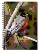 Rockin' Robin Spiral Notebook