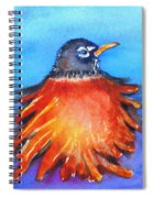 Rockin Robin Spiral Notebook