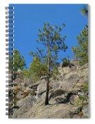 Rockin' Tree Spiral Notebook