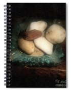 Rocks And Dust Spiral Notebook