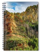 Rocks And Pines Spiral Notebook