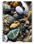 Rocks And Shells Spiral Notebook