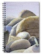 Rocks Spiral Notebook