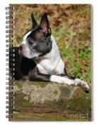 Rocksolid Spiral Notebook