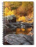 Rocky Creek II On Mill Mountain In The Missouri Ozarks Spiral Notebook