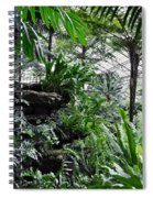 Rocky Fern Room Spiral Notebook