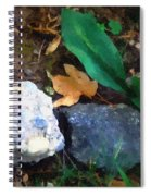 Rocky Ground Spiral Notebook