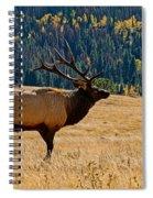 Rocky Mountain Bull Elk Spiral Notebook