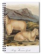 Rocky Mountain Goats Spiral Notebook