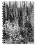 Rocky Mountain High Elevation Forest Large Panorama Spiral Notebook