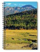 Rocky Mountain National Park Elk Spiral Notebook