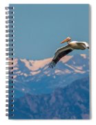 Rocky Mountain Pelican Spiral Notebook