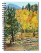 Rocky Mountain Siesta Spiral Notebook