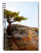 Rocky Mountain Tree Spiral Notebook