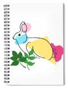 Roger Bunny Spiral Notebook
