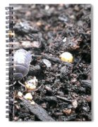 Roley Poley Spiral Notebook