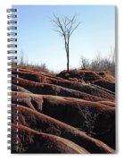 Rolling Red Badlands Spiral Notebook