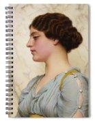 Roman Beauty Spiral Notebook