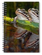 Romance Amongst The Frogs Spiral Notebook